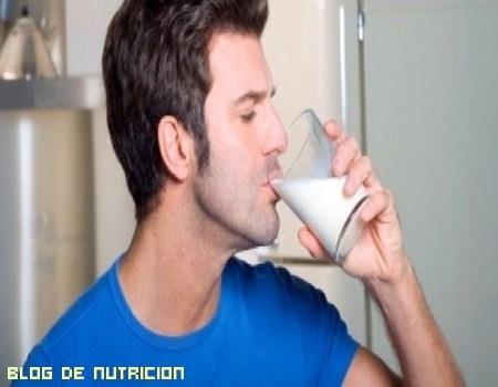 ¿Cuánta cantidad de lácteos debemos de tomar?
