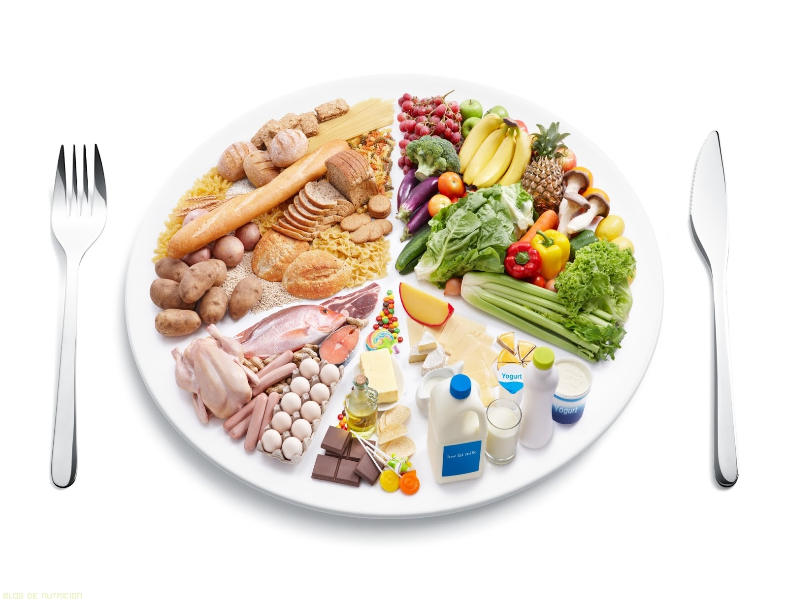 No te olvides del plan de alimentaci n - Platos sencillos y sanos ...
