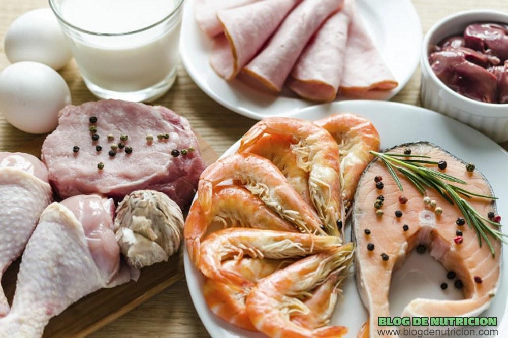 comidas con proteínas