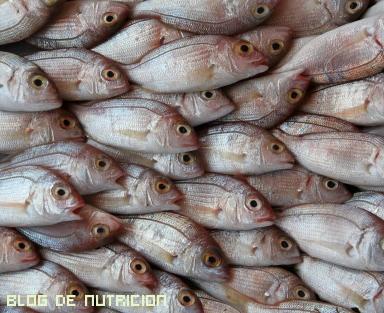 propiedades del pescado en la salud