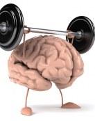 Formas de entrenar nuestro cerebro